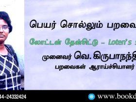 Loten's Sunbird Name Telling Birds Series Article by V Kirubhanandhini. Book Day Website is Branch of Bharathi Puthakayalam.