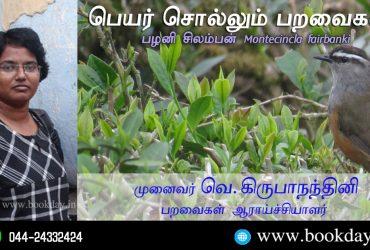 Palani Laughingthrush Name Telling Birds Series Article by V Kirubhanandhini. Book Day Website is Branch of Bharathi Puthakayalam. பெயர் சொல்லும் பறவைகள் 14 - பழனி சிலம்பன் (Montecincla fairbanki)   முனைவர். வெ. கிருபாநந்தினி